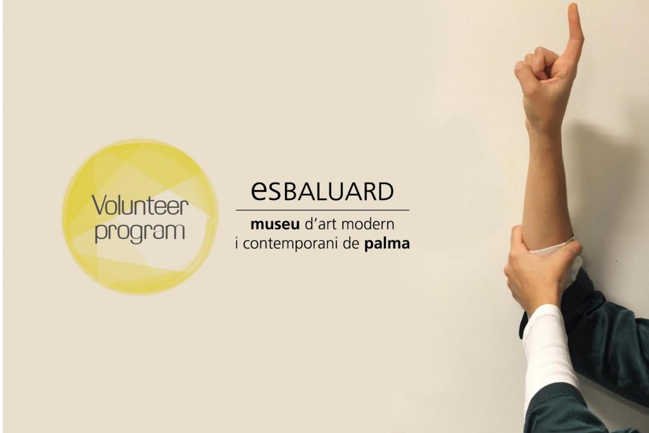 Es Baluard Voluntary Programme